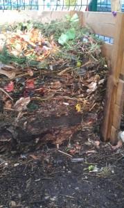 Compost_n°1