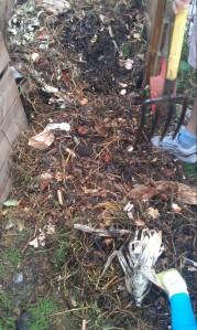 Compost_n°2