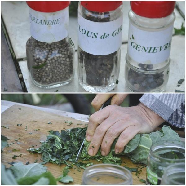 Conserver les légumes grâce à la lacto-fermentation.