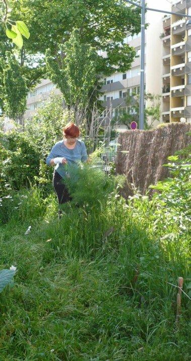 Anne dans la végétation