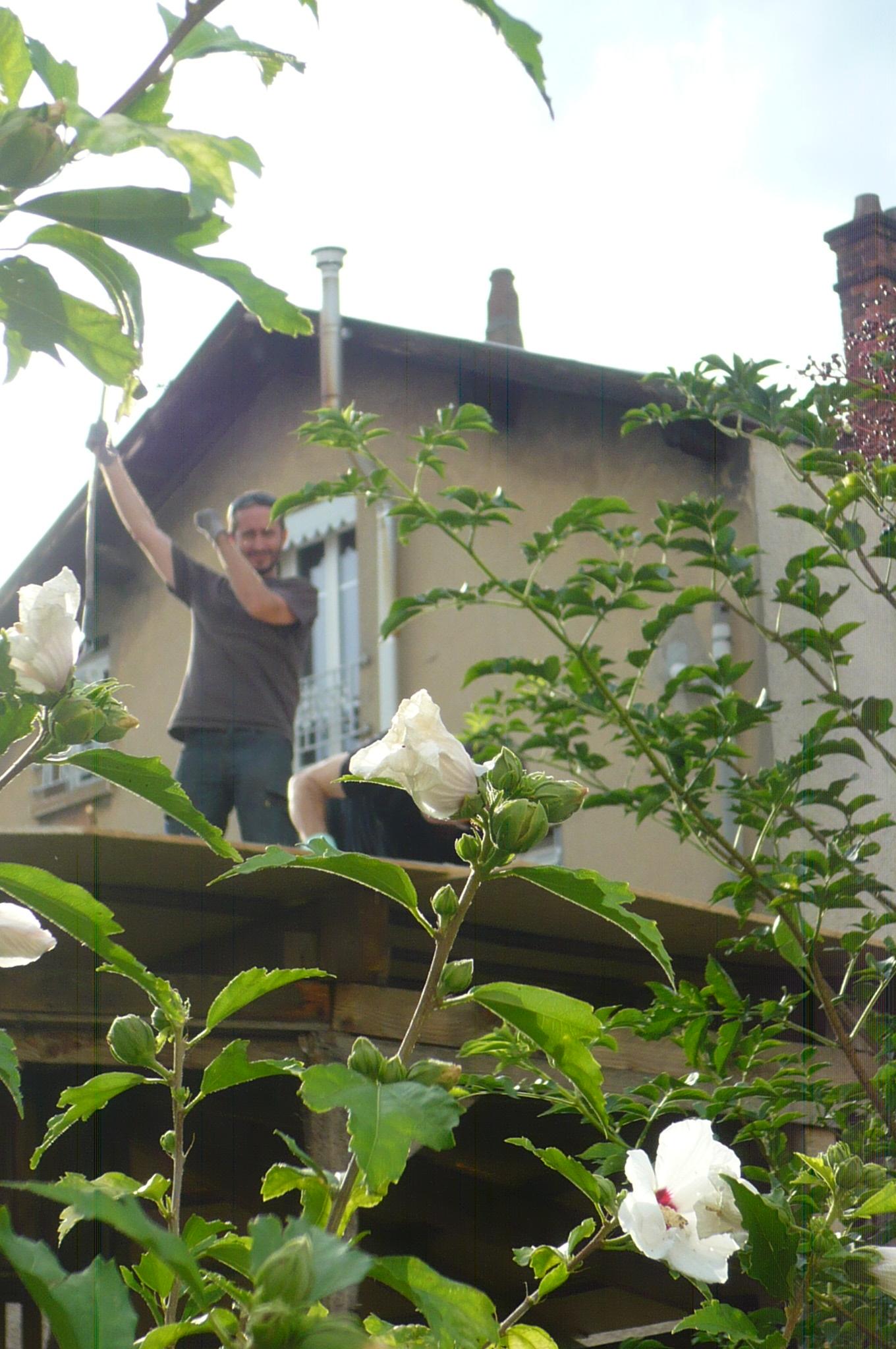 La toiture du patio a avance le jardin d 39 yvonne for Ca vient du jardin