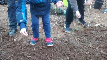 les enfants sèment la prairie fleurie