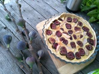 une belle tarte aux figues